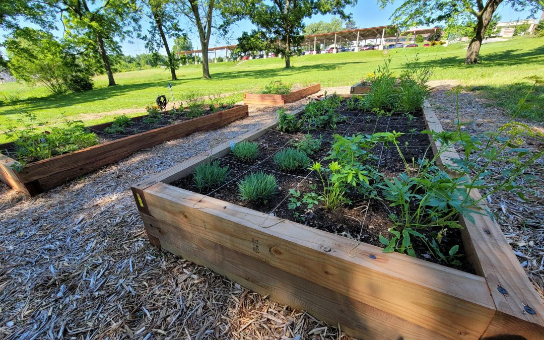Ecological Concern Leads SCL to Plant Butterfly Garden
